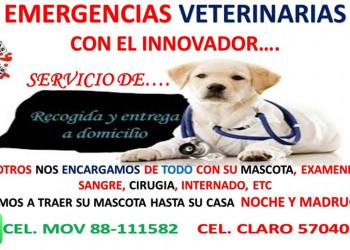 HOSPITAL DE EMERGENCIAS VETERINARIAS