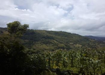 VENDO PROPIEDAD DE 3 MANZANAS EN MATAGALPA