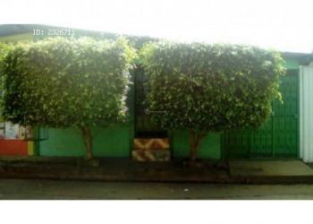 alquiler cuarto con baño entrada independiente Jinotepe – Carazo 58178626