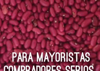 Frijol Rojo para Mayoristas