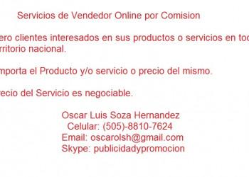 Servicios de Vendedor Online por Comision
