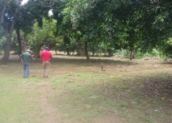 LOTES DE TERRENOS EN MASAYA