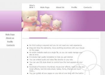 Diseño de Páginas Web: Estáticas, Dinámicas, WordPress