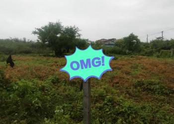 Vendo hermoso terrenos ubicado en km9 carretera nueva a León