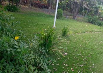 Venta de Solar San Isidro de la Cruz Verde